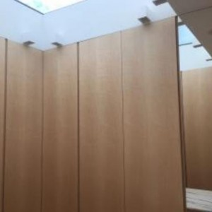 Figured maple bespoke wardrobe