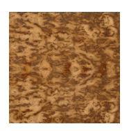 Tiger brown oak burr