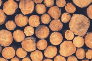 how wood veneer is made